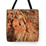 Sunrise On Colorful Sandstone In Valley Of Fire Tote Bag