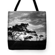 Sunrise Over Fort Salonga B W Tote Bag