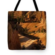 Sunrise Point 9 Tote Bag