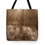 Sunrise Sepia Tote Bag