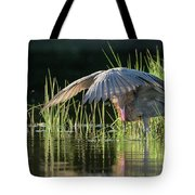 Sunrise Shade Tote Bag