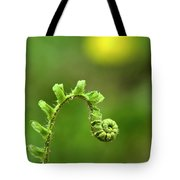Sunrise Spiral Fern Tote Bag