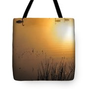 Sunrise Swim Tote Bag
