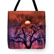 Sunrise Through The Foggy Tree Tote Bag