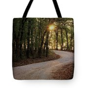 Sunrise Through The Woods Tote Bag