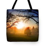 Sunrise Through Trees Tote Bag