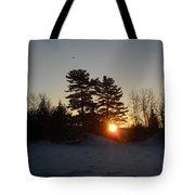 Sunrise Under Pine Tree Tote Bag