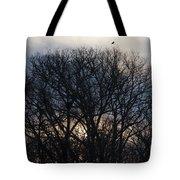 Sunrise With Bird Tote Bag