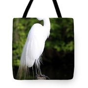 Sunrise With The Egret  Tote Bag