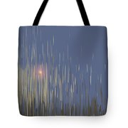 Sunset Across The Lake Tote Bag by Gina Harrison