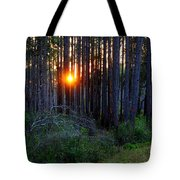 Sunset Along The Florida Trail - St.marks Tote Bag