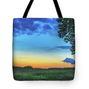 Sunset And Flowers Tote Bag