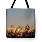 Sunset And Palm Grass Tote Bag