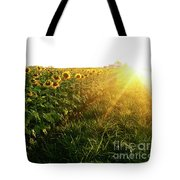 Sunset And Rows Of Sunflowers Tote Bag