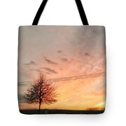Sunset And Tree Tote Bag