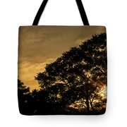 Sunset And Trees - San Salvador Tote Bag