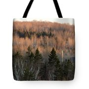 Sunset April 19 Tote Bag