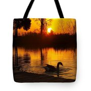 Sunset At Copper Canyon Ranch Tote Bag