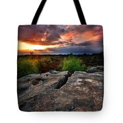 Sunset At Fontainebleau Tote Bag