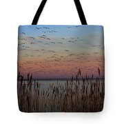 Sunset At Forsythe Tote Bag