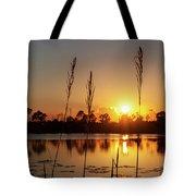 Sunset At Gator Hole 3 Tote Bag