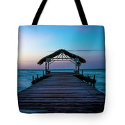 Sunset At Pigeon Point Tote Bag by Rachel Lee Young