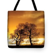 Sunset At Redhill Tote Bag