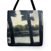 Sunset At Rochester Tote Bag