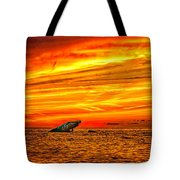 Sunset At The Ss Atlantus - Pano Tote Bag