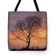 Sunset Bench Tote Bag