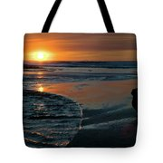 Sunset Capture Tote Bag