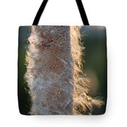 Sunset Cat Tail Lathrop California Tote Bag