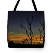 Sunset Cocktail Tote Bag