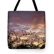 Sunset Colors To The West Tote Bag