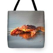 Sunset Crab Tote Bag