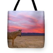 Sunset Filly Tote Bag
