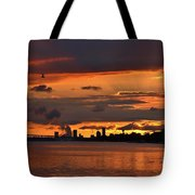Sunset Flight Of The Tern Tote Bag