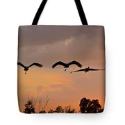 Sunset Fly Over Tote Bag