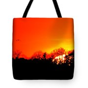 Sunset Flying Three  Tote Bag