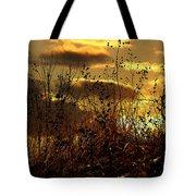 Sunset Grasses Tote Bag