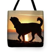 Sunset Howl Tote Bag