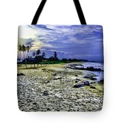 Sunset In Palma Sola Tote Bag