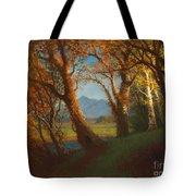 Sunset In The Nebraska Territory Tote Bag by Albert Bierstadt
