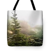 Sunset In The Pine Forest Tote Bag