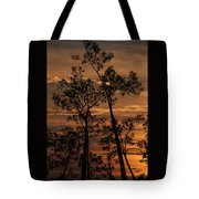 Sunset In The Pine Woods Tote Bag