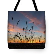 Sunset In The Weeds Tote Bag