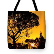 Sunset In Tujunga Tote Bag