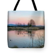 Sunset In Union Bay Tote Bag
