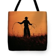 Sunset Lariat 2 Tote Bag