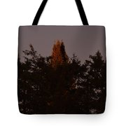 Sunset Light Tote Bag